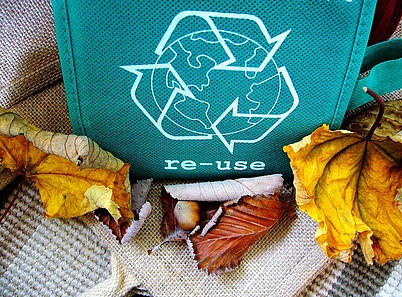 recycle-green-bag-surrounded-by-yellow-oak-leaves